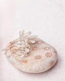 一个奇怪的多斑点的岩石和烘干在美好的沙子的海草 免版税图库摄影