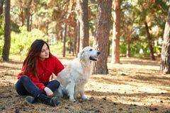 一个女孩使用与她的金毛猎犬 库存照片