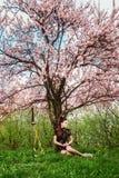 一个女孩和一把剑在开花的樱花下 库存照片