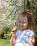 一个女孩在一个开花的庭院里在春天 免版税库存图片