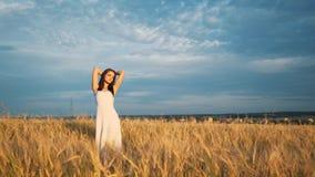 一个女孩在一块金黄麦田站立在日落并且举他的手,慢动作 股票视频