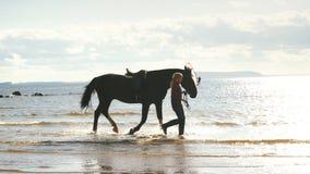 一个女孩在与马的海滩走 影视素材