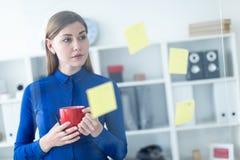 一个女孩在办公室在她的手上站立在有贴纸的一个透明委员会附近并且拿着一个红色杯子 库存图片