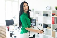 一个女孩在办公室拿着一支铅笔和板料笔记的 免版税库存图片