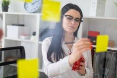 一个女孩在有贴纸的委员会附近站立并且拿着一支红色杯子和铅笔在她的手上 免版税库存照片