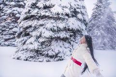 一个女孩在树中的一块森林冬天沼地 库存照片