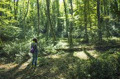 一个女孩在森林 免版税库存图片