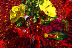 一个女孩在特立尼达和多巴哥描述富有的植物群和动物区系 图库摄影
