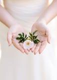 一个女孩的美好的精美手有白花的在他们的手上 免版税库存图片