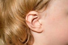 一个女孩的耳朵 免版税图库摄影