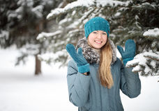 一个女孩的画象在冬天 库存图片