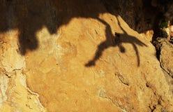 一个女性攀岩运动员的影子 免版税库存图片