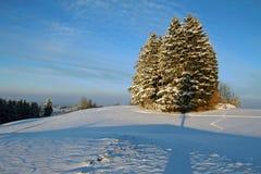 一个好冷的冬日在巴伐利亚 免版税库存图片