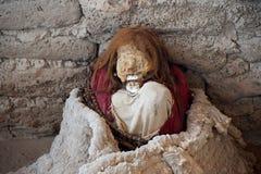 一个妈咪在Chauchilla公墓 库存图片