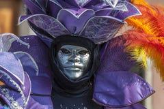 一个威尼斯式面具的画象 免版税库存图片
