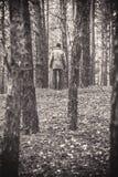 一个孤独的人在秋天时间的一个杉木森林里 单色 免版税图库摄影