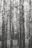一个孤独的人在秋天时间的一个杉木森林里 单色 库存图片