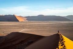 一个孤独的旅行家在沙漠 免版税库存照片