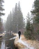 一个孤立人在冬天勇敢在SierraThe内华达山的冬天站立在雪盖的半 免版税库存图片