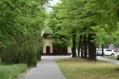 一个孤零零咖啡馆在树和灌木树荫下  库存照片