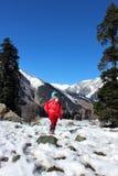 一个孩子的画象雪山谷的 库存照片