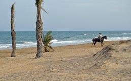 一个安静的海滩 图库摄影