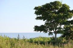 一个安静的湖边平地视图 库存图片