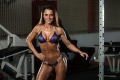 一个完全适合的肌肉少妇的画象 库存照片