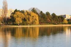 一个完善的晴天 步行的完善的时光在公园 免版税图库摄影