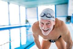 一个室内游泳池的老人 图库摄影