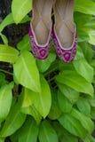 一个对传统手工制造印地安妇女` s穿上鞋子在绿色叶子背景的jutis  免版税库存图片