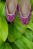 一个对传统手工制造印地安妇女` s穿上鞋子在绿色叶子背景的jutis  库存照片