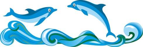 一个对在波浪的海豚 库存照片