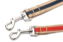 一个对有短冷期钩子勾子触发器的红色和蓝色镶边帆布带宠物衣领围绕夹子 免版税库存照片