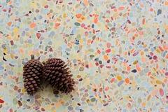 一个对杉木锥体在五颜六色的地板上把放 免版税库存照片
