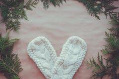 一个对白色编织了有金钟柏分支的手套在牛皮纸背景  冬天,舒适,圣诞节的标志 顶层 库存照片
