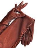 一个对端庄的妇女的皮手套 免版税库存照片