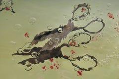 一个对老葡萄酒在水中剪:水变形金属剪影,在的小红色种子附近驱散的剪刀 库存照片