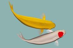 一个对koi鱼 库存图片