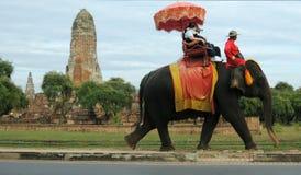一个寺庙的塔在一头五颜六色的走的大象的背景的阿尤特拉利夫雷斯 库存照片