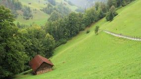 一个小储藏箱和牧场地有绿色森林的 免版税库存图片