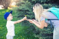 一个小儿子给他的母亲一个蒲公英 免版税库存照片