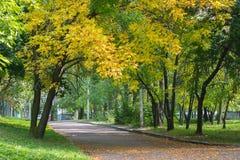 一个小夏天公园 免版税图库摄影