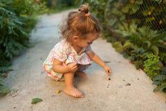 一个小女孩在一件时兴的礼服漫步穿戴了在后院或在一个温暖的夏天晴朗的下午的公园 免版税库存图片
