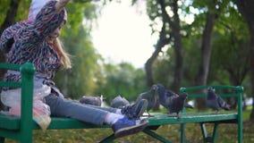 一个小女孩在秋天公园喂养鸽子 股票录像