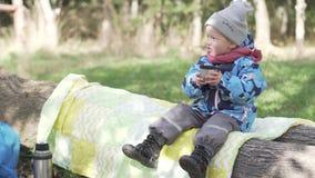 一个小女孩坐一个树桩在秋天森林里 影视素材