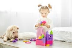 一个小女孩演奏塑料玩具块 狗谎言 的treadled 库存图片