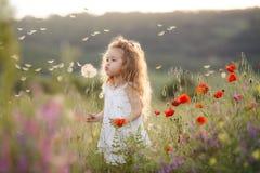 一个小女孩用在夏天草甸的一个蒲公英 免版税图库摄影