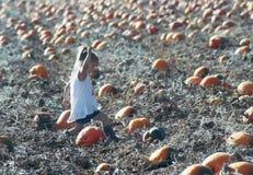 一个小女孩赶紧劫掠完善的南瓜 图库摄影