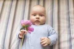 一个小孩子拿着一朵桃红色牡丹花 免版税库存照片